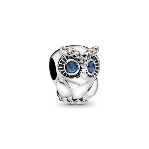 Sparkling Owl Charm